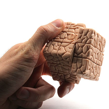 1671_the_brain_cube_inuse
